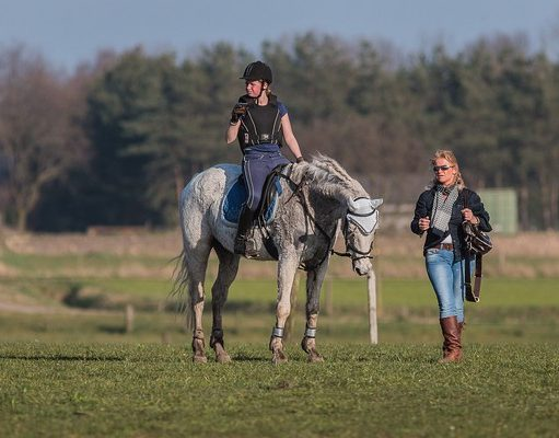 Training day Eventing Photo