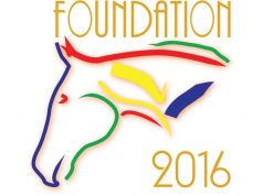 Stichting Foundation 2016 | SGW Online