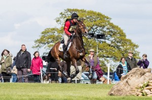 Andrew Heffernan NED Boleybawn Ace | Copyright Eventing Photo