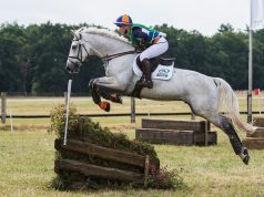 Elaine Pen NED Blue Nile | Copyright Eventing Photo