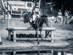 Bjinse Venderbosch NED Lord Mayor | CCI1* Renswoude 2017 © Eventing Photo