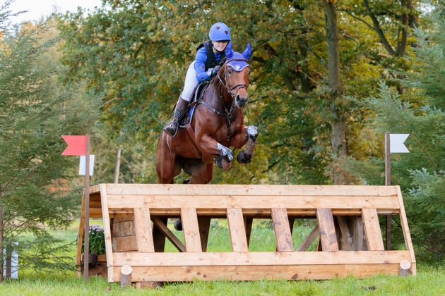 Harte Hasselbach NED Expierence Cs | M-horses SGW Hattem 2017 © Eventingphoto