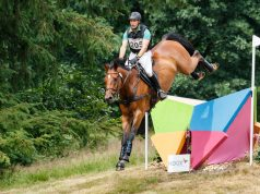 Marc Dahlkamp GER Lege Artis 2 | Maarsbergen Horse Trials 2017 © Eventingphoto
