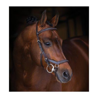 horseware micklem deluxe